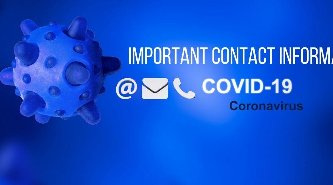 COVID-19 Contact Information At A Glance