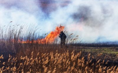 Fighting Fires With Reduced Water Use