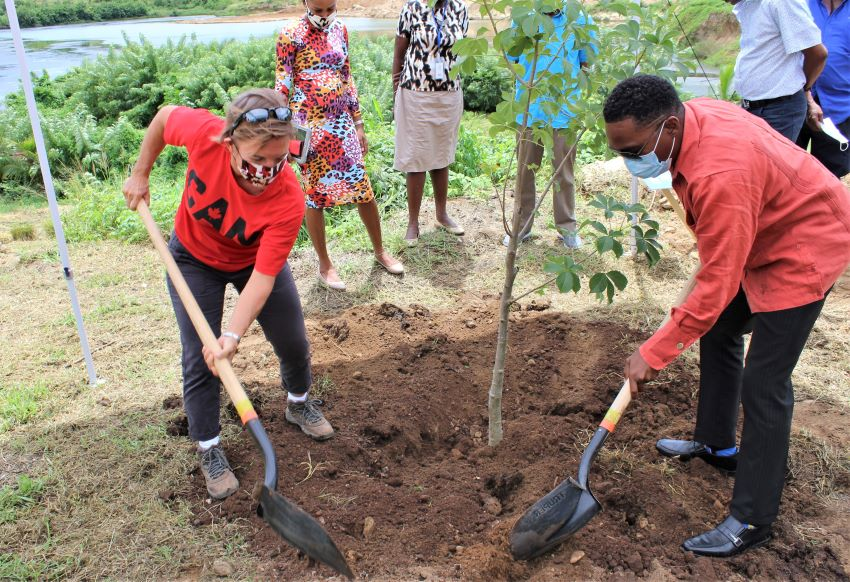 Walkers Institute Praised For Tree Planting Efforts