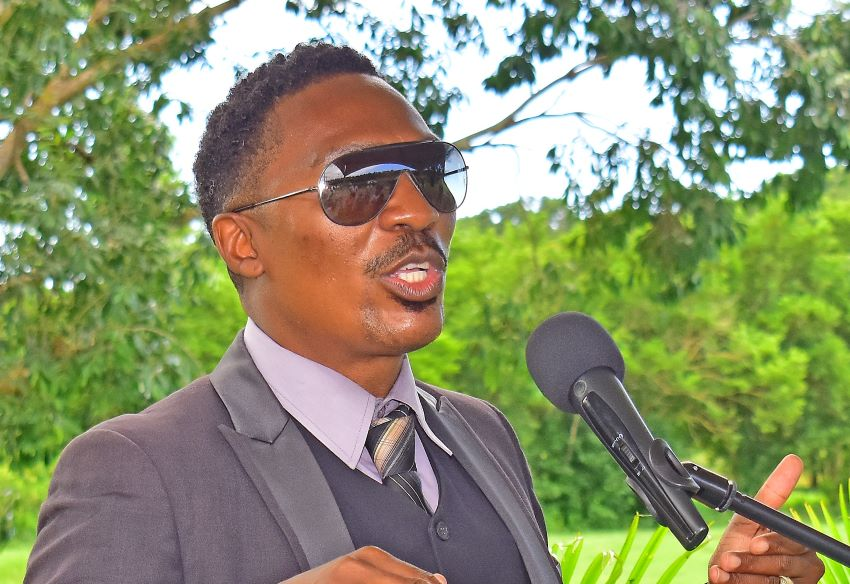 Minister Forde: Trees Vital To Sustainable Development