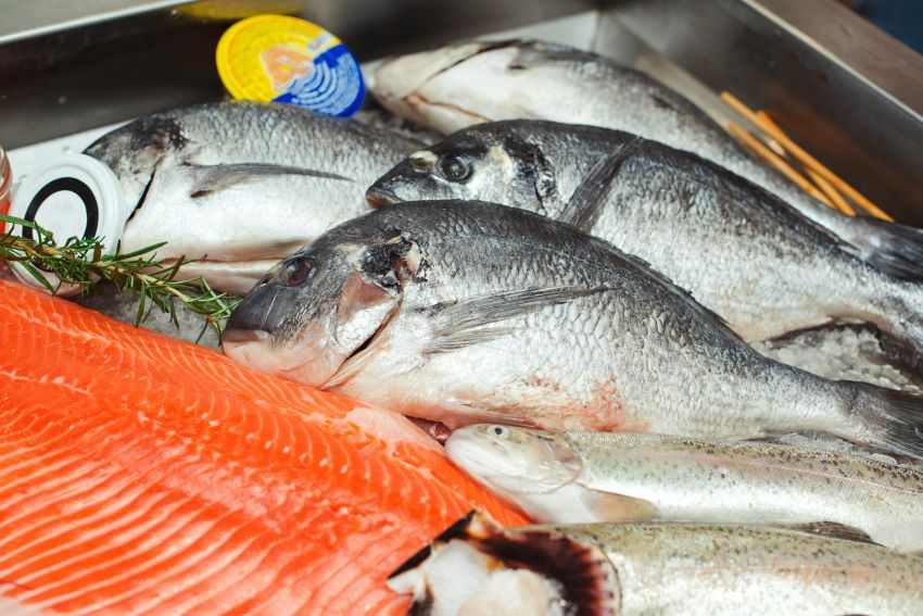 Opportunities For Fish Processors & Fish Mongers In UK