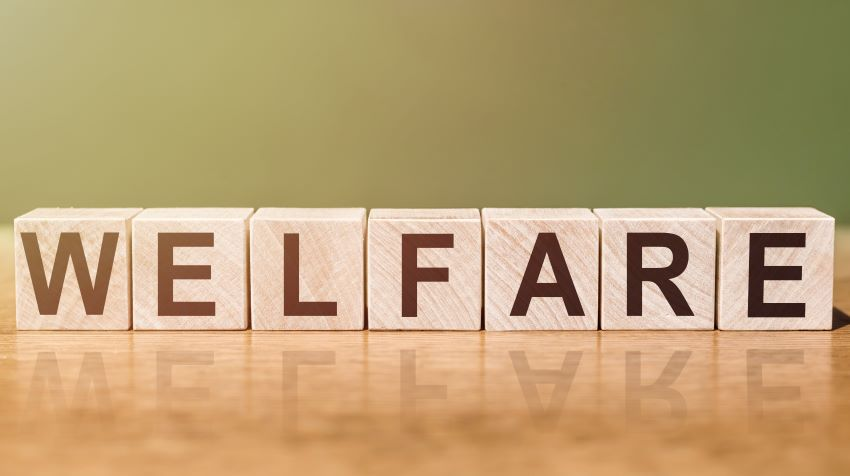 Welfare Applications For Back-To-School Assistance
