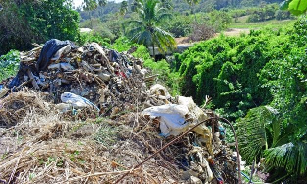 Ministers Condemn Illegal Dumping At Bath, St. John