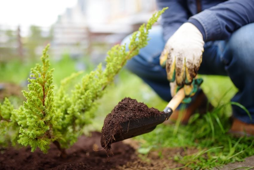 Employment Opportunities In Landscaping In Canada
