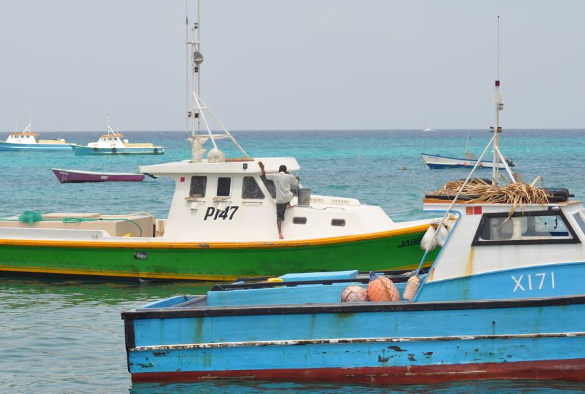 Fishing With New Regulations: Prohibitions & Licences