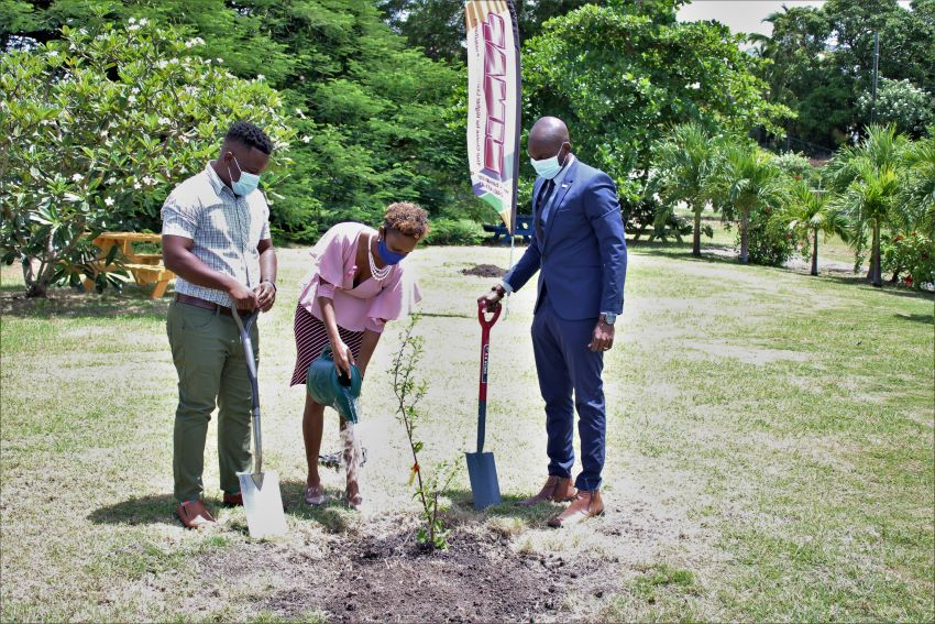 Greening Project To Benefit Youth & Country