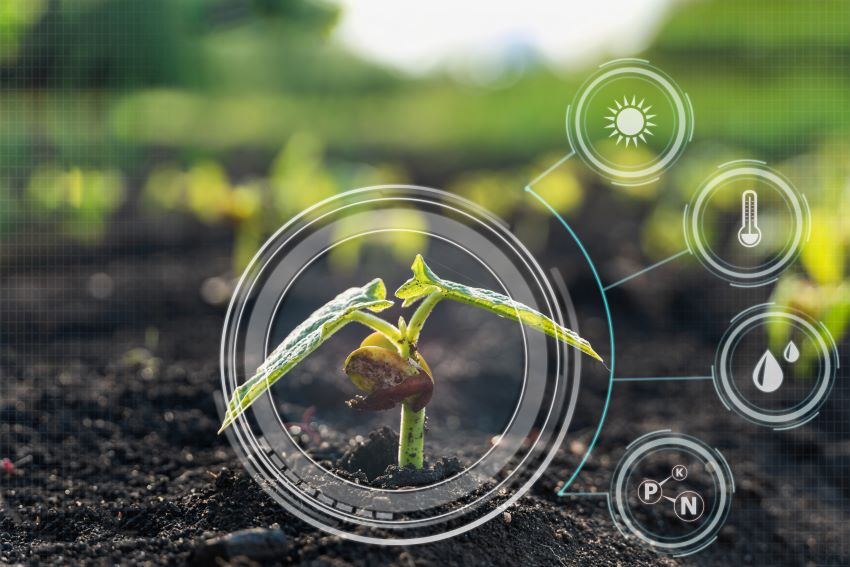 Agricultural Health & Food Control Programme Soon